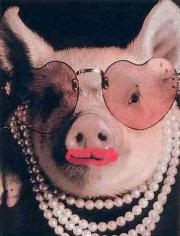 lipstick-pig